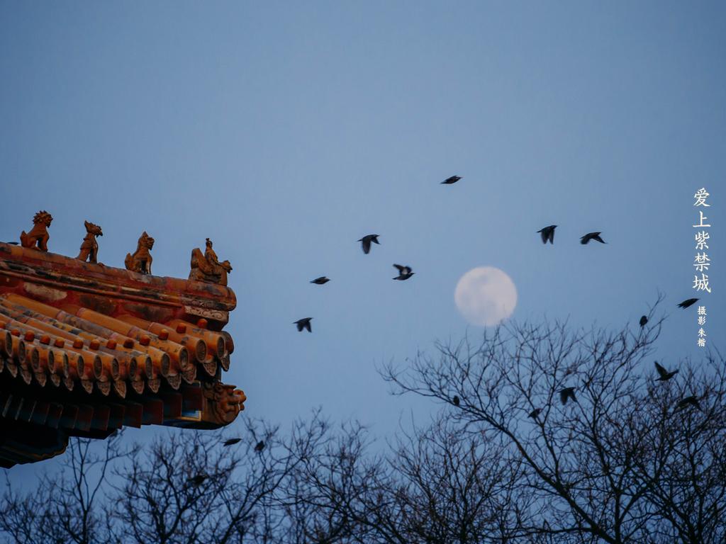 爱上紫禁城-檐角月亮