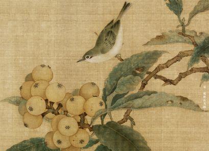 宋 枇杷山鸟图
